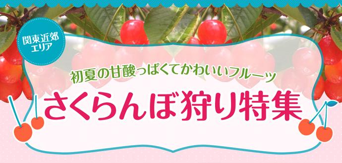 slide_cherry.jpg