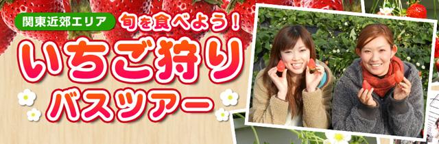 sp_banner_ichigo.jpg
