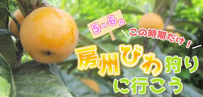 slide_biwagari.jpg