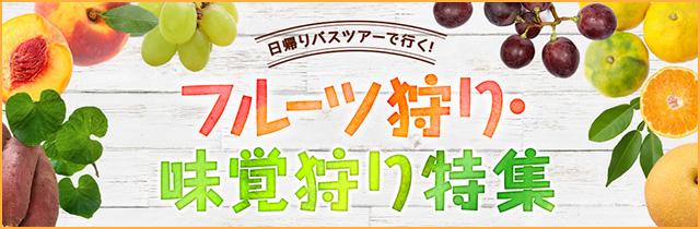 sp_slide_fruits.jpg