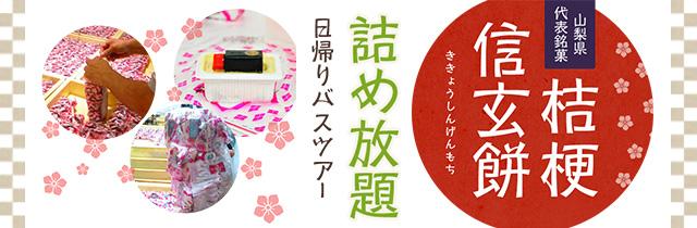 sp_slide_shingenmochi.jpg
